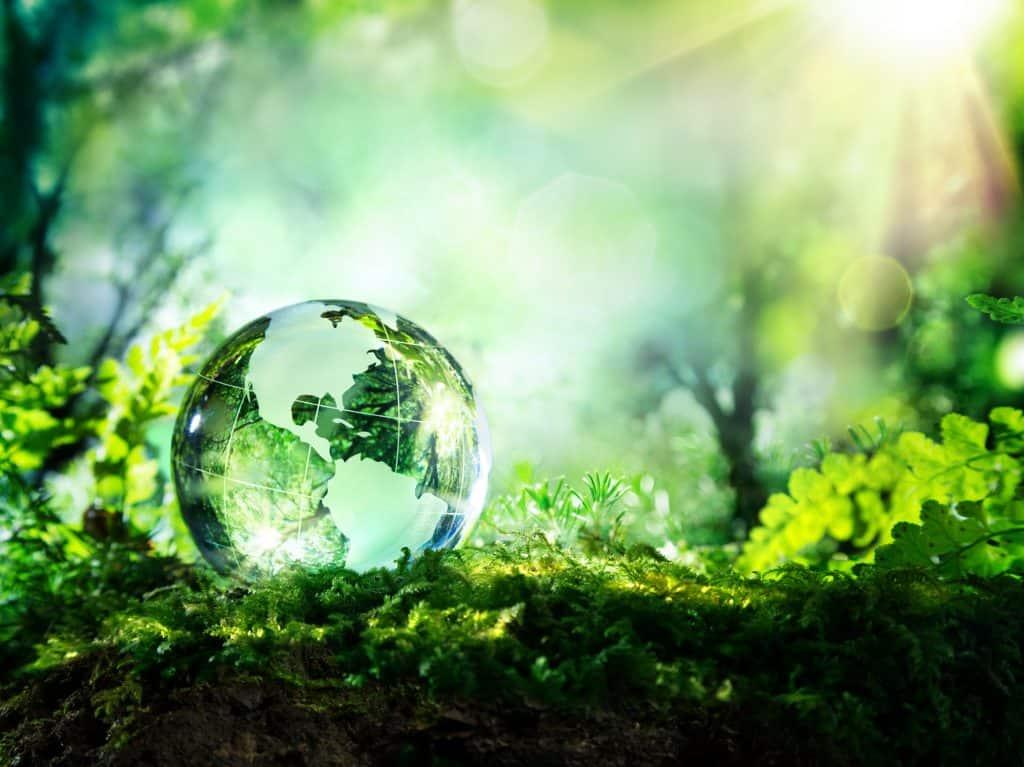 5 - World-Environment-Day-2019