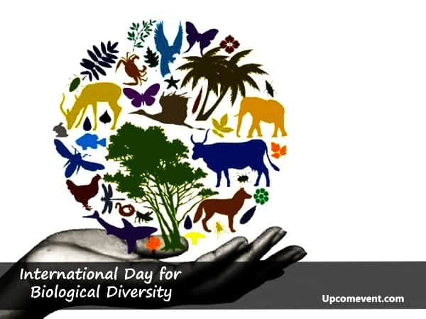22 - International-Day-for-Biological-Diversity-2019