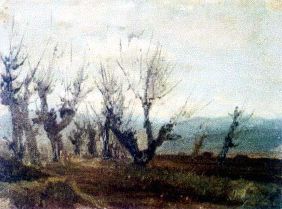Leafless Poplars in the Meadow of Cislău