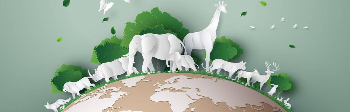 4 - World-Animal-Day-3